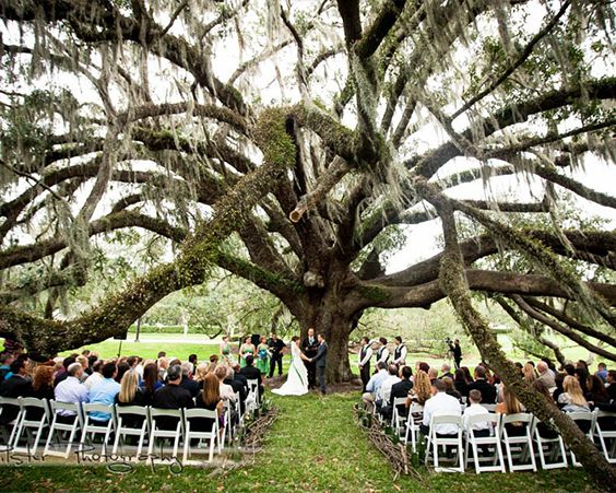 Весілля на природі - прекрасне рішення для теплих днів