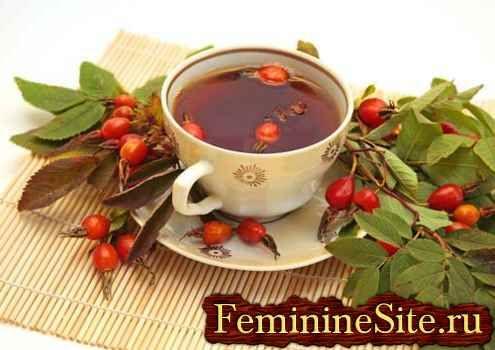 Чай із шипшини - еліксир здоров`я, перевірений століттями.