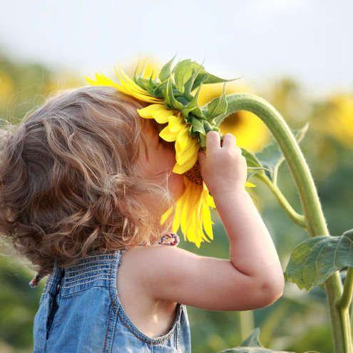 Чим корисна ароматерапія для дітей і способи її організації