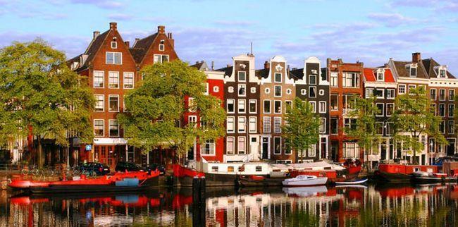 красень Амстердам
