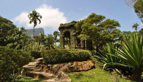 Ботанічний сад в Ріо