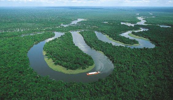 красуня Амазонка