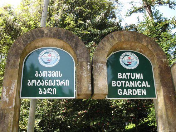 Батумський ботанічний сад 1