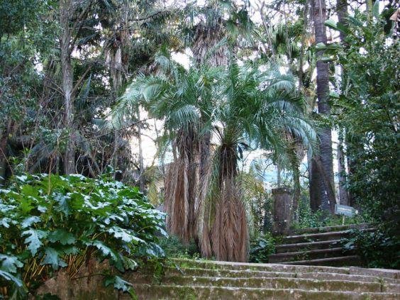 Ботанічний парк в Лісабоні