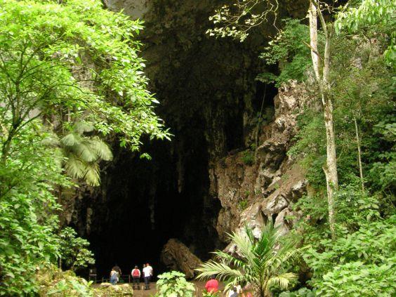 Парк Національний парк Гуачаро
