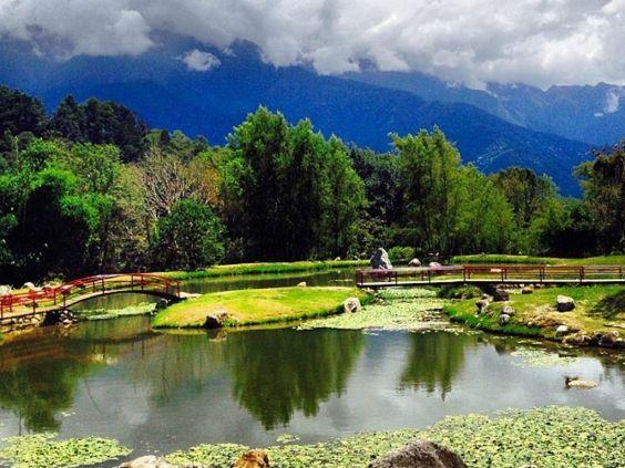 Ботанічний сад Меріди