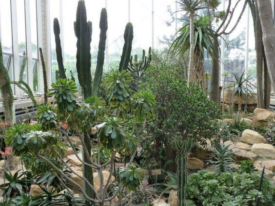 Женевський Ботанічний сад