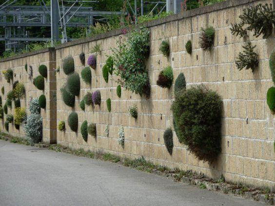 Женевський Ботанічний сад. Стіна