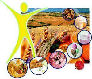 Харчові волокна